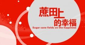 可口可乐-公益片拍摄蔗田上的幸福